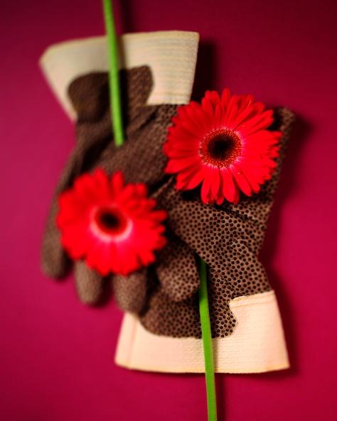 Prickig handske på lila kopia