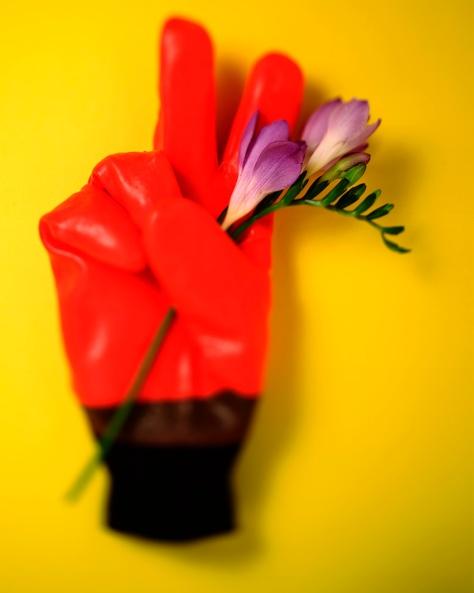V Röd handske mot gult 2 kopia