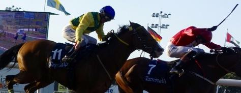 Derby 3