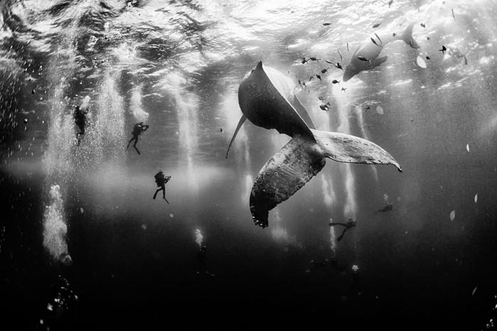 Photograph: Anuar Patjane